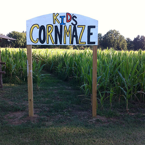 Duck Hill Ms >> The Corn Maze At Bull Bottom Farms In Duck Hill Mississippi